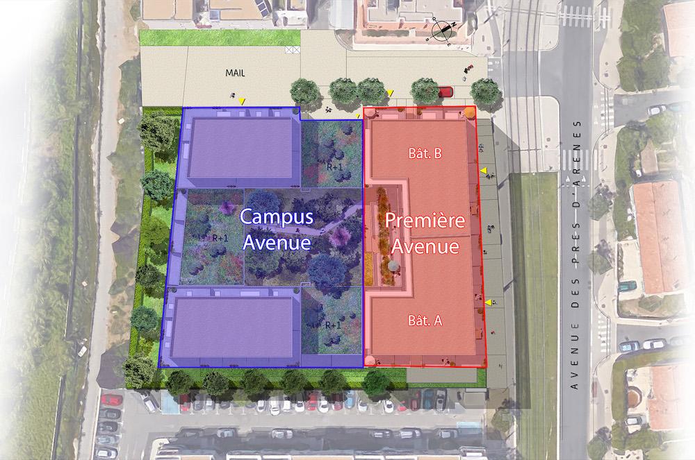 Campus Avenue